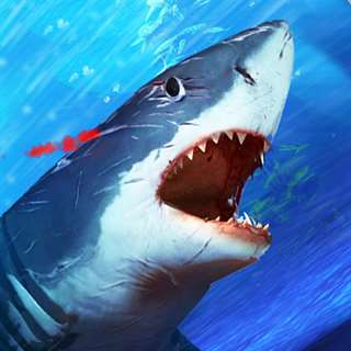 Shark Attack Angry Fish Jaws Unlimited Everything