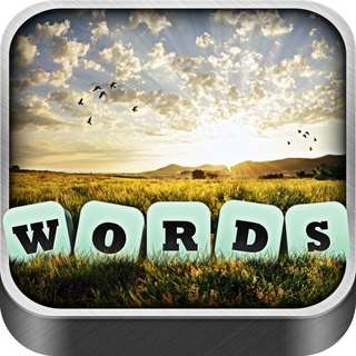 Words in a Pic Cheat Tool Online